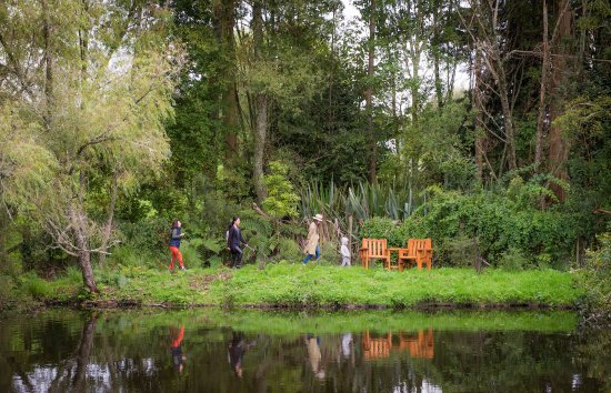 Mokoia Downs Estate B&B: treasure hunt
