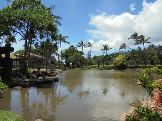 Wailuku, HI: Beautiful trees and flowers surround the lake enjoyed by fish, ducks and turtles.