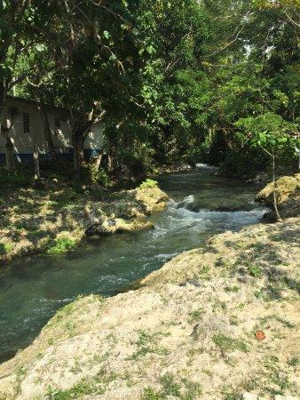 Petersfield, Jamajka: photo3.jpg