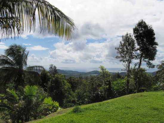El Hotelito at the Rainforest Experience Farm-bild