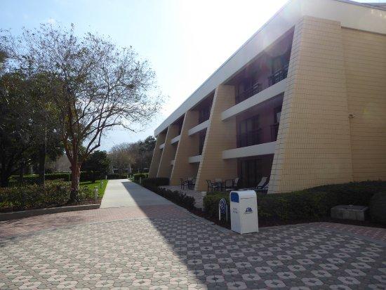 Bay Lake Tower Dvc Building Picture Of Disney 39 S Contemporary Resort Orlando Tripadvisor