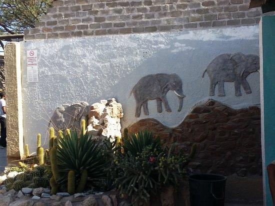 Солитер, Намибия: esterno