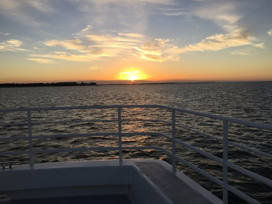 Whalesong Cruises: Sunset cruise