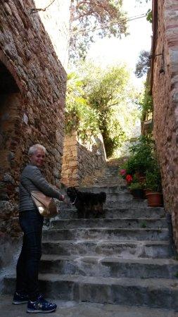Museo della Rocca di Campiglia: le salite
