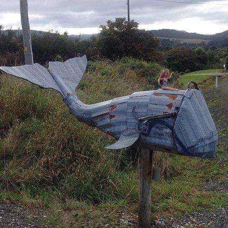 Papatowai, Nueva Zelanda: photo2.jpg