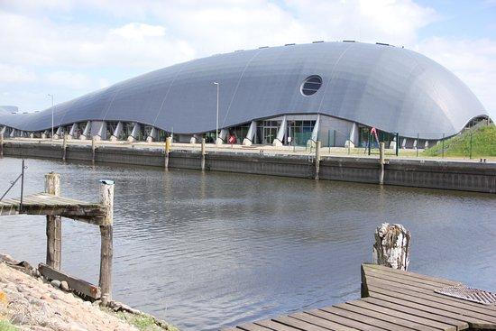 Seehundstation Friedrichskoog: Spielewal bei der Robbenstation am alten Hafen in Friedrichskoog