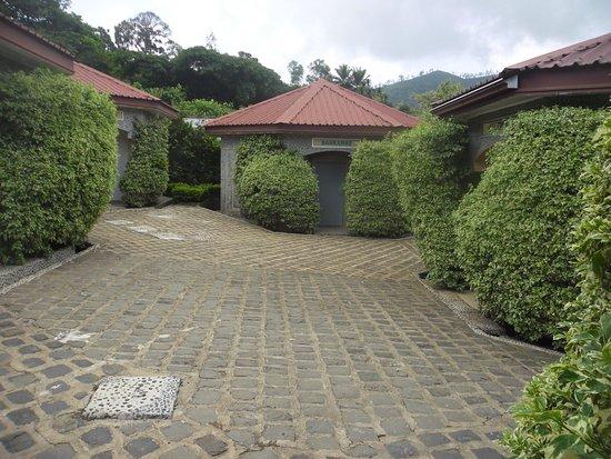 jardin picture of la vallee de bana yaounde tripadvisor. Black Bedroom Furniture Sets. Home Design Ideas