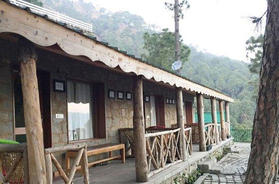 Nature Stay Kasauli Himachal Pradesh Guesthouse Reviews Photos Rate Comparison Tripadvisor
