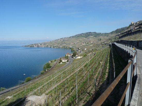 Chexbres, Switzerland: Entre Rivaz et Epesses