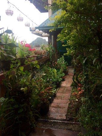 Sanafe Lodge: photo2.jpg