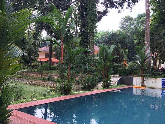 Karimannoor, Ινδία: photo2.jpg