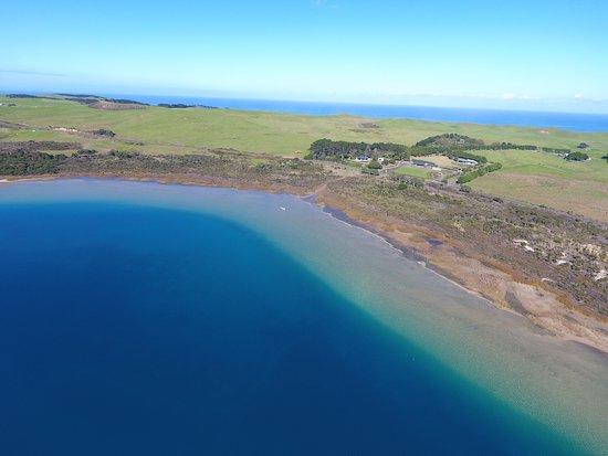 Dargaville, Nuova Zelanda: photo0.jpg