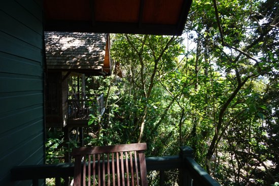 Permai Rainforest Resort Photo