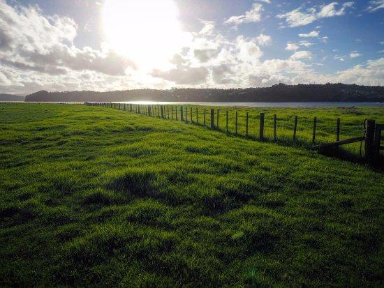 Manukau, New Zealand: Beautiful sunset