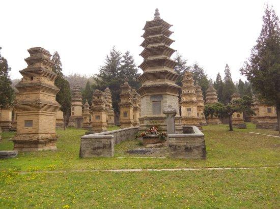 Shaolin Temple : Pagoda forest