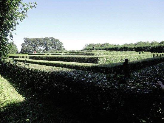 Nairn, UK: Il labirinto del Cawdor Castle
