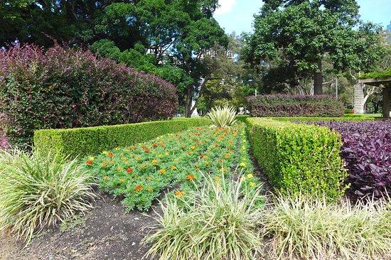 Hyde Park: P1190367_large.jpg