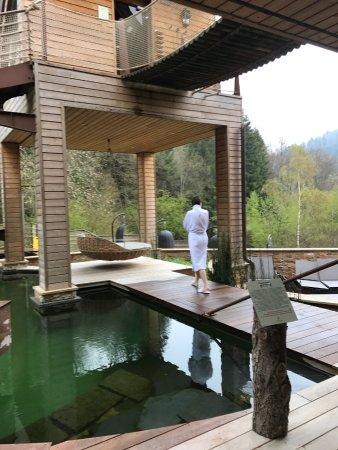 Terrasse Exterieure Piscine Biotope Et Sauna Suspendu