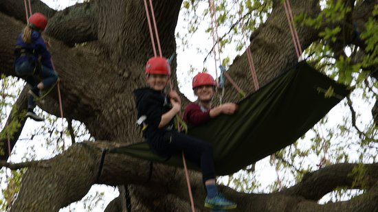 Goodleaf Tree Climbing: Relaxing in the hammock!