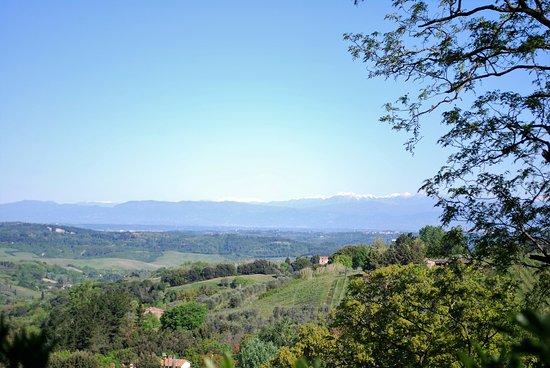 Bilde fra Montaione