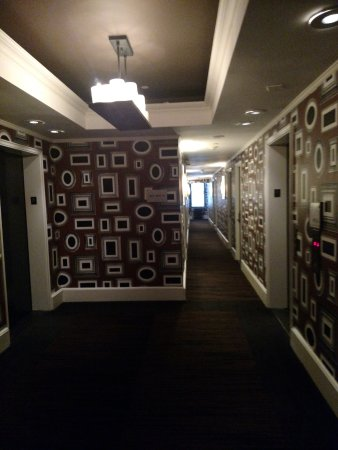 Empire Hotel: Hallway with funky wallpaper