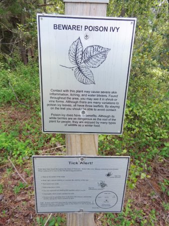 Millville, DE: Poison Ivy warning on the trail