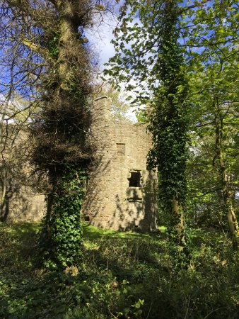 Kinross, UK: View of castle from the woods