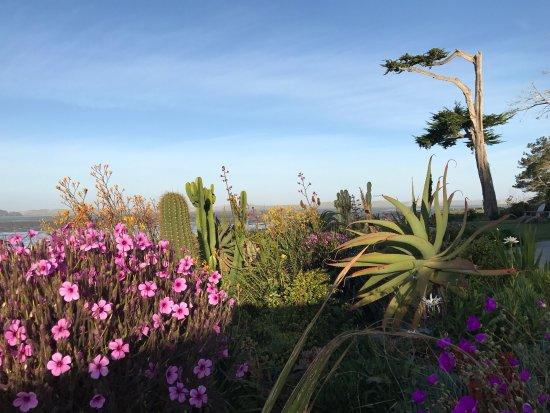 Los Osos, Калифорния: photo3.jpg