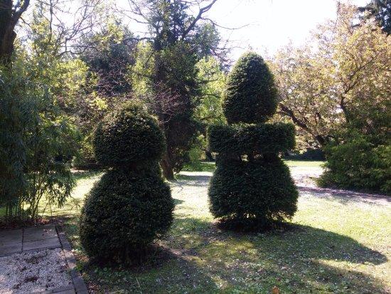 Botanical Garden: botanic garden Bratislava