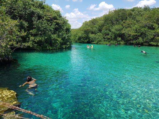 Casa Cenote: Cenote