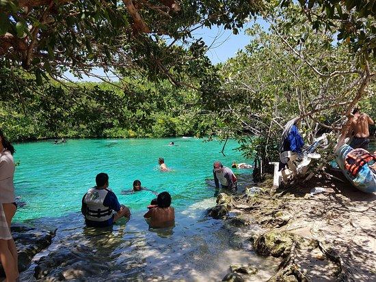 Casa Cenote: ingresso Cenote