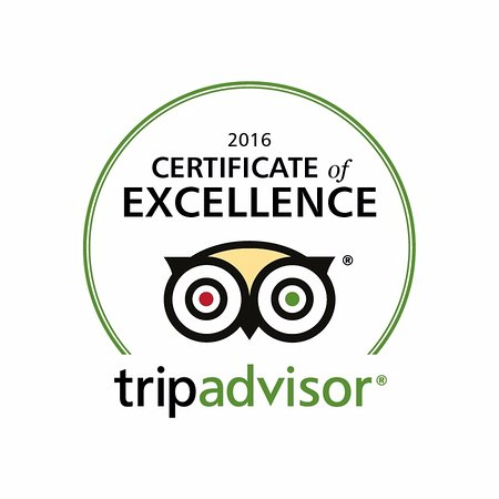 Dorset, UK: We are proud of our Tripadvisor Certificate of Excellence for our New Forest woodland activities