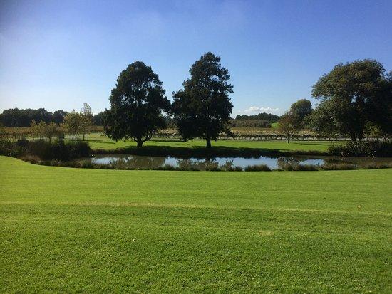 Mangere, Nowa Zelandia: View of lake and vineyard beyond ,taken from restaurant