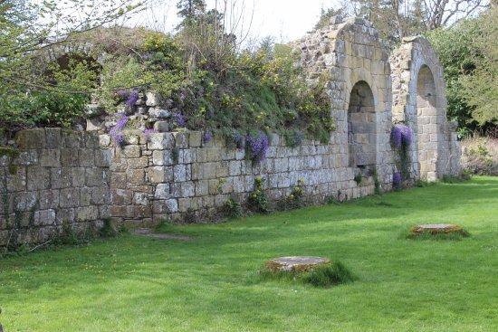 Walls of Jervaulx Abbey