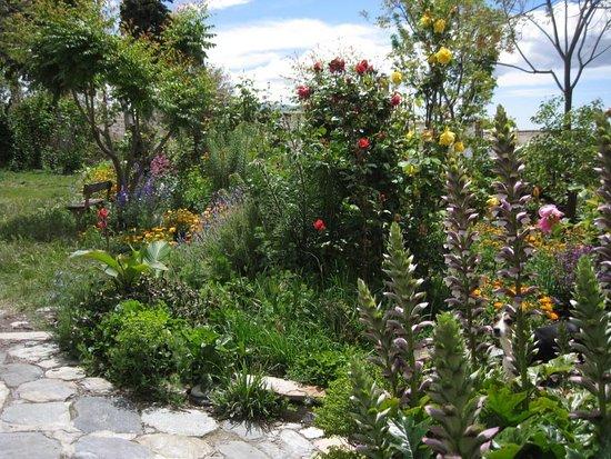 Mairena, Spanien: Rose garden