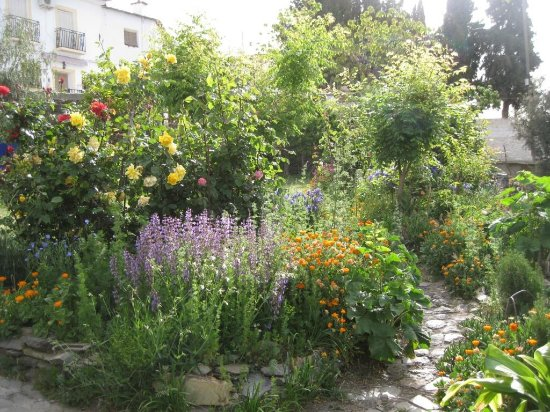 Mairena, Spanien: The garden in april