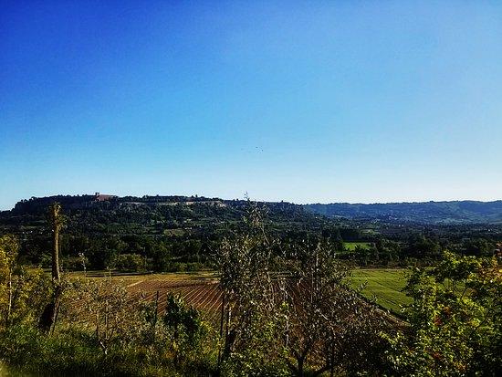 Agriturismo Il Poggio Di Orvieto: Vista di Orvieto dall'agriturismo