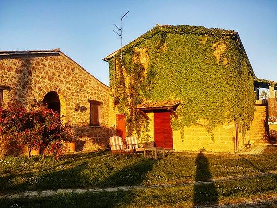Agriturismo Il Poggio Di Orvieto: Agriturismo