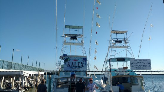 Bud n' Mary's Sportfishing Marina: Hooked up 13 sails, caught 11 - on a half-day. Thanks Captain Alex and Rich!