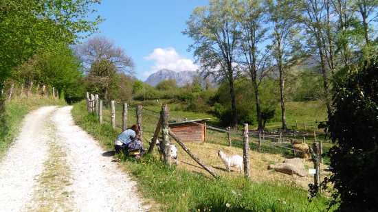 Castiglione di Garfagnana, Italy: IMG_20170424_095956_large.jpg