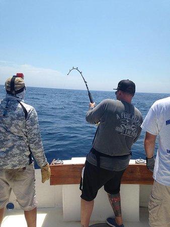 Shark fishing trip summer 2015 picture of double d for Montauk shark fishing