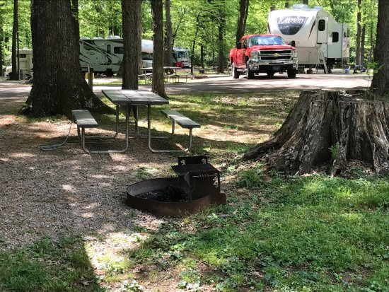 My Old Kentucky Home Campground Reviews