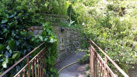 Le jardin d 39 eden de tournon picture of le jardin d 39 eden for Le jardin d eden