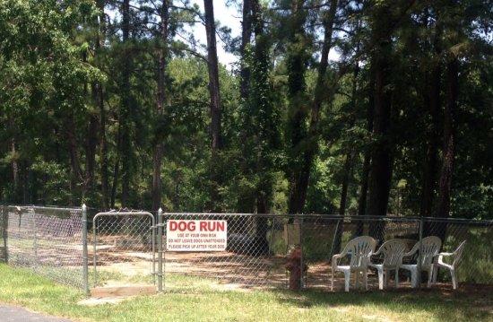 New Caney, TX: Fenced dog run