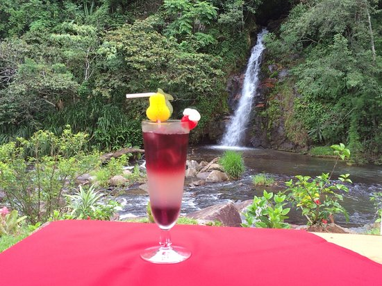 Santa Maria, Kosta Rika: Cóctel Tinto a la Catarata