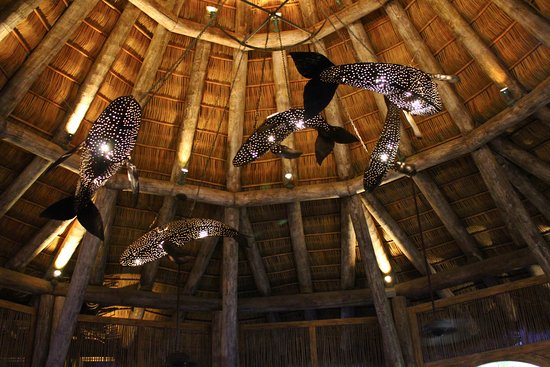 Whale shark lights in the outdoor dining area! - Picture of ...