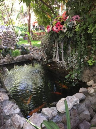 La Gruta Spa: photo2.jpg