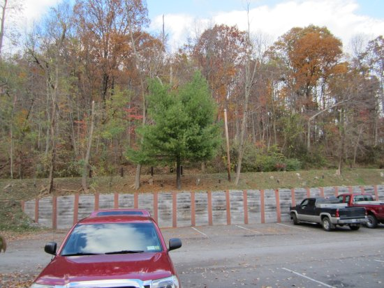 Grafton, WV: Parking area in front of my room. Very convenient.