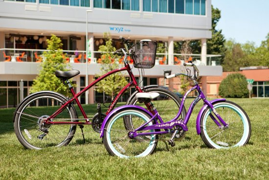 Complimentary Bike Rentals for Adults and Children - Picture