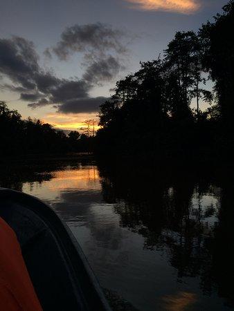 Sandakan Division, Malaysia: Night Safari
